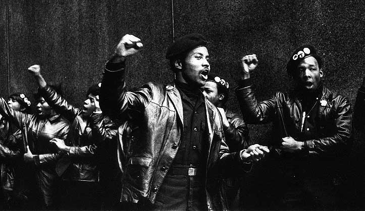 A history of the black panther party bpp